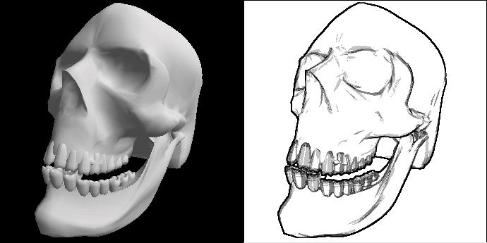 Skull (Gouroud e LMBelleArts)